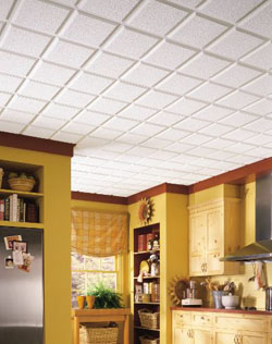 Armstrong HomeStyle Ceiling Panels